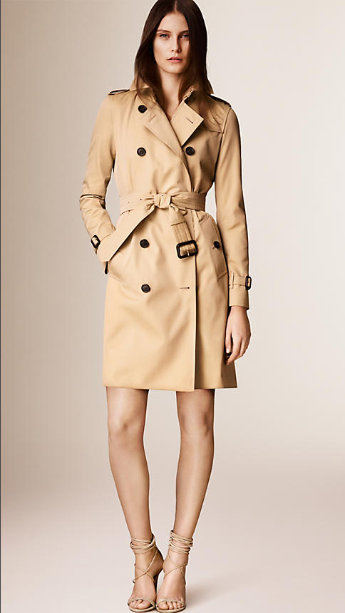 trench burberry.png